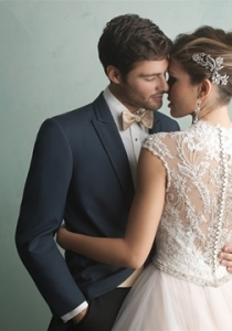9162 by Allure Bridal (back view) of wedding dress from Lori G Derby